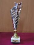 Международный конкурс «Будущие АСы КОМПьютерного 3D-моделирования – 2013»-3